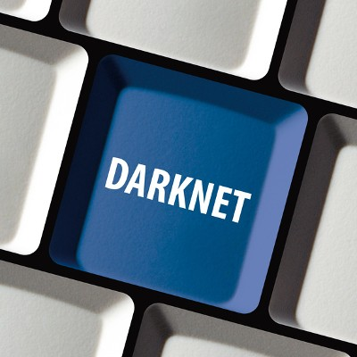 The Underworld of Cybercrime, the Darknet